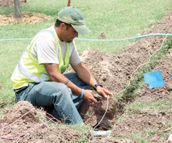 College plants 46 trees to enrich the landscape