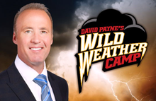 Wild Weather David Payne