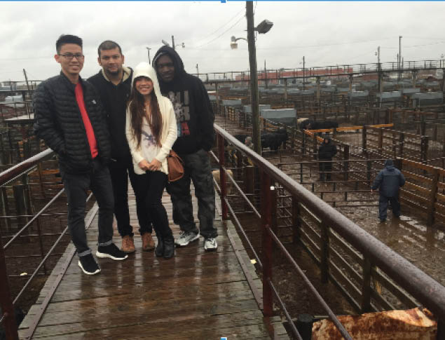 International students share view of Oklahoma