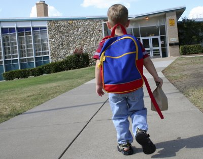 Only 30 percent of children receive appropriate schooling, expert says