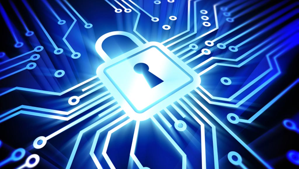 Youngsters study cyber security