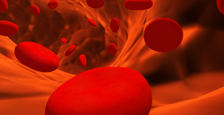 PRP-Red-Blood-Cells_Edited