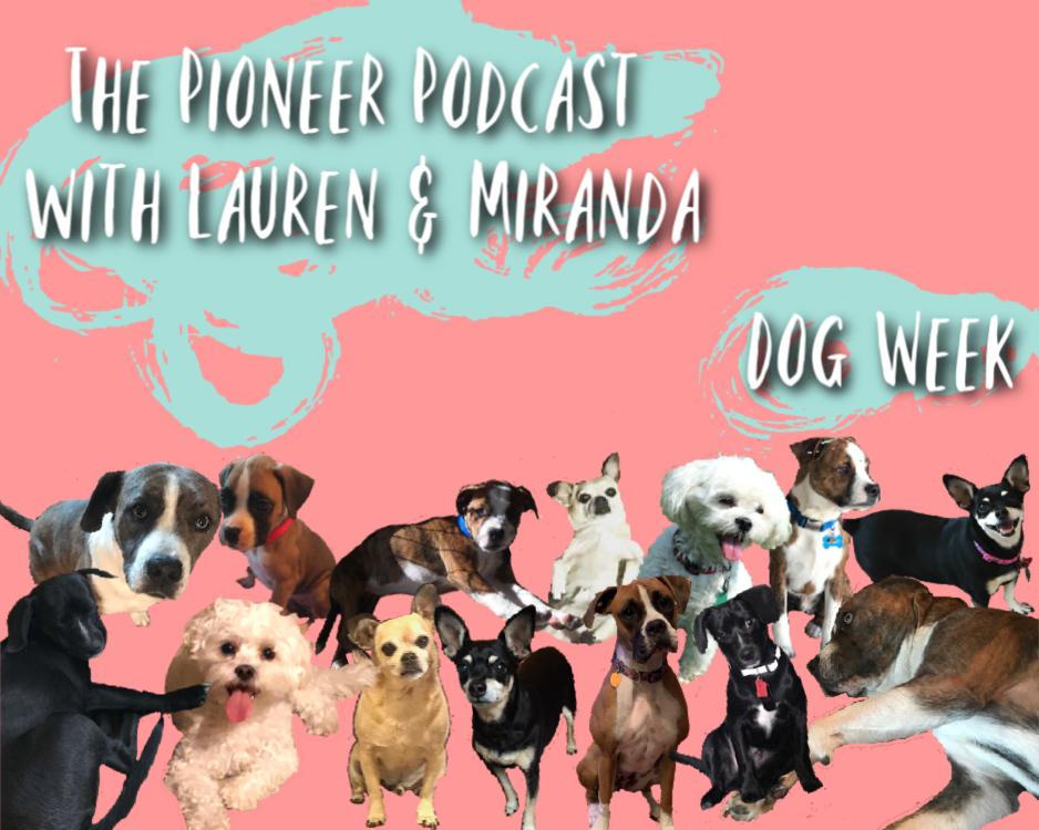 The Pioneer Podcast: Adopt Don't Shop!